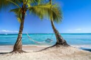 367962-photography-landscape-nature-tropical-beach-palm_trees-hammocks-caribbean-sea-summer-sand-sailboats-island-dominican_